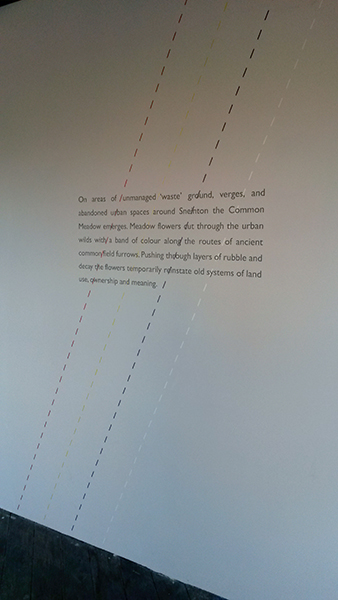 Common Wall Vinyl